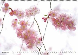 SPIRITUAL (Wandkalender 2016 DIN A2 quer)