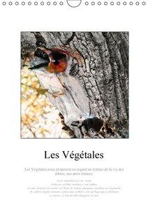 Les Végétales (Calendrier mural 2015 DIN A4 vertical)