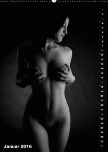 Still Moments of Nude Photography (Wandkalender 2016 DIN A2 hoch