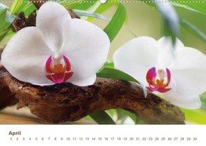 Wellness für die Seele (Wandkalender 2013 DIN A3 quer)