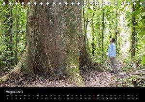 Peru - von den Anden zum Amazonas (Tischkalender 2016 DIN A5 que
