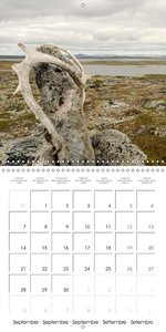 Norway: Crossing the Hardangervidda (Wall Calendar 2015 300 × 30