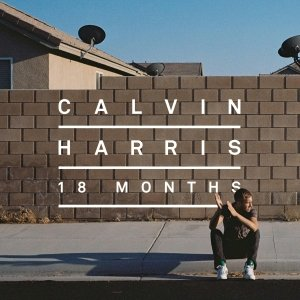 18 Months