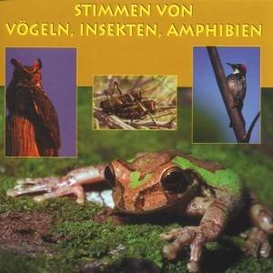 Stimmen V.Vögeln,Insekten,Amph