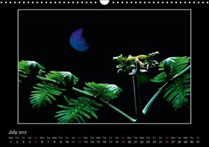 phoetry dreams (Wall Calendar 2015 DIN A3 Landscape)