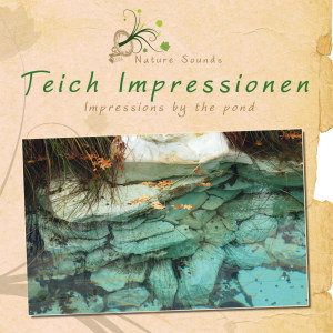 Teich Impressionen