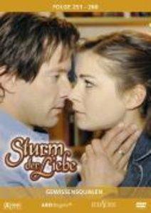 Sturm der Liebe 26 (DVD)