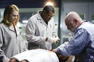 CSI: Season 8 komplett,Episoden 1-17