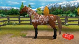 Pony Friends 2 + Mein Gestüt