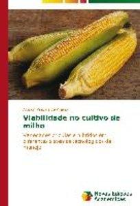 Viabilidade no cultivo de milho