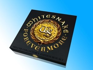 Forevermore (Boxset Inkl.CD+DVD/LP+Lithographie