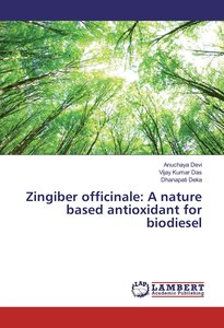 Zingiber officinale: A nature based antioxidant for biodiesel