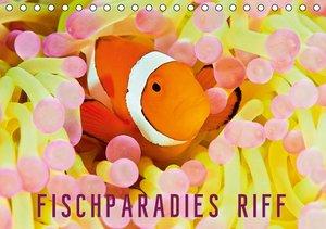 Fischparadies Riff (Tischkalender 2016 DIN A5 quer)