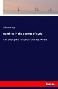 Rambles in the deserts of Syria