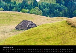 Transylvanian Farmhouses (Wall Calendar 2015 DIN A3 Landscape)