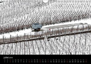 Les vignes du Lavaux Vaudois (Calendrier mural 2016 DIN A4 horiz