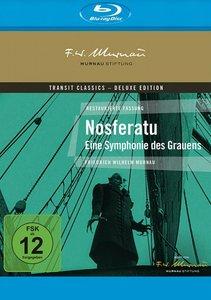 Nosferatu-Eine Symphonie des Grauens BD