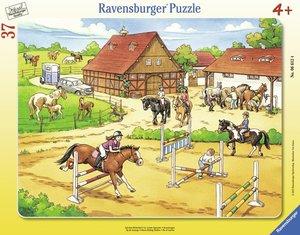 Auf dem Reiterhof. Rahmenpuzzle 37 Teile