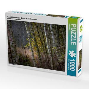Pennigbüttler Moor - Birken im Teufelsmoor 1000 Teile Puzzle que