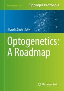Optogenetics: A Roadmap