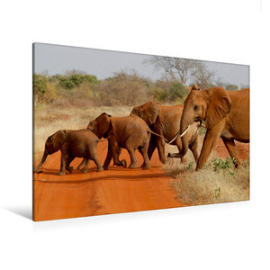 Premium Textil-Leinwand 120 cm x 80 cm quer Tsavo East NP, Kenia