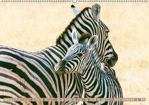 Gernegroß: Tierkinder in Afrika