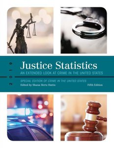 Justice Statistics: An Extended Look at Crime in the United Stat