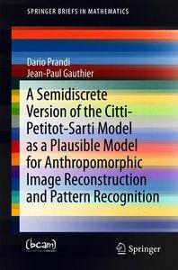 A Semidiscrete Version of the Citti-Petitot-Sarti Model as a Pla