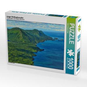 Junger Weißkopfseeadler 1000 Teile Puzzle quer