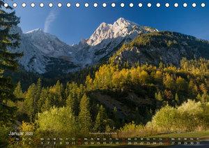 Großer Ahornboden - Europas großer Ahornwald