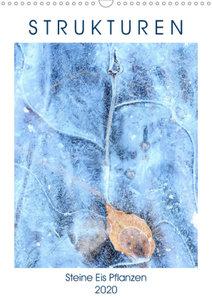 Strukturen - Steine, Eis, Pflanzen