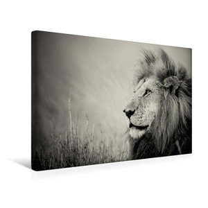 Premium Textil-Leinwand 45 cm x 30 cm quer The Lion King