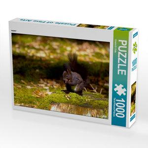 CALVENDO Puzzle Puzzle 1000 Teile Lege-Größe 64 x 48 cm Foto-Puz