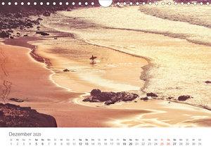 Fuerteventura - die Wüsteninsel der Kanaren (Wandkalender 2020 D