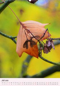 Lust auf Herbstfarben (Wandkalender 2020 DIN A2 hoch)