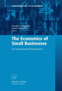 The Economics of Small Businesses