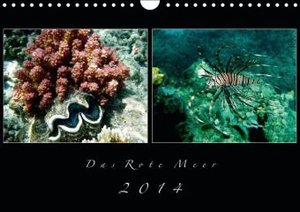 Das Rote Meer - 2014 (Wandkalender 2014 DIN A4 quer)