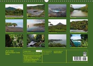 ¡Pura vida! Naturschätze Costa Ricas (Wandkalender immerwährend