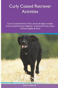 Curly Coated Retriever Activities Curly Coated Retriever Tricks