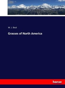 Grasses of North America