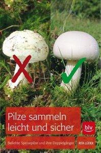 Pilze sammeln leicht und sicher