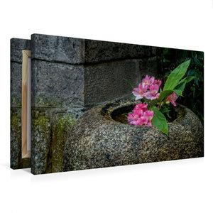 Premium Textil-Leinwand 75 cm x 50 cm quer Blüten in einer Stein
