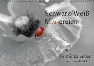Schwarz-Weiß Malereien Terminkalender von Tanja Riedel (Wandkale