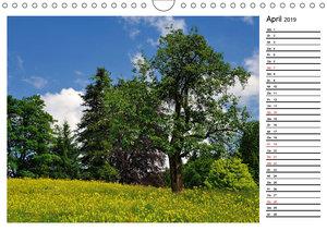 Mein Werdenfelser Land (Wandkalender 2019 DIN A4 quer)