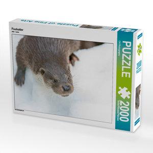 CALVENDO Puzzle Fischotter 2000 Teile Lege-Größe 90 x 67 cm Foto