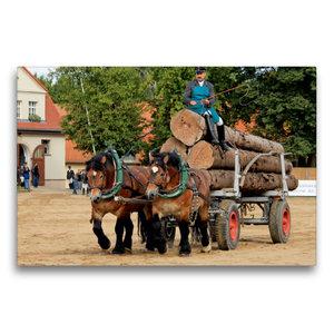 Premium Textil-Leinwand 75 cm x 50 cm quer Rheinisch- Dt. Kaltbl