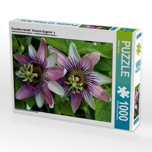 Passiflora belotii ´Kaiserin Eugenie` x 1000 Teile Puzzle quer