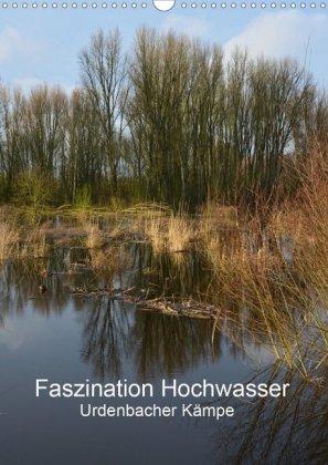 Faszination Hochwasser - Urdenbacher Kämpe - zum Schließen ins Bild klicken