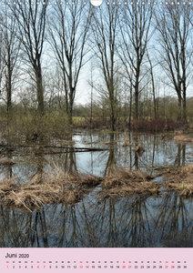 Faszination Hochwasser - Urdenbacher Kämpe