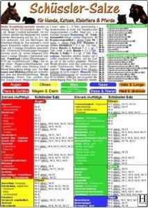 Schüssler-Salze für Hunde, Katzen, Kleintiere und Pferde. DIN A5